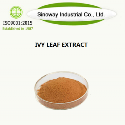 IVY LEAF EXTRACT مورد-Sinoway